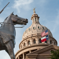 Rise of Partisan Polarization in the Texas House.