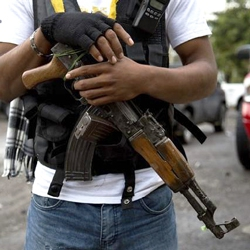 In Mexico, a right to bear arms?.