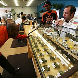 Read: Marijuana Reform: Fears and Facts