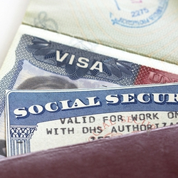 Read: Crackdown on high-skilled visas?
