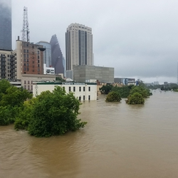 "The Role of Public and Private Stakeholders in ""Solving"" Houston's Flooding Problem"
