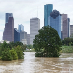Houston Flooding 3.5 Years After Harvey.
