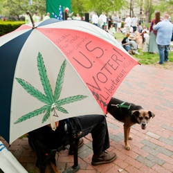Read: A Paradigm Shift in Federal Marijuana Policy